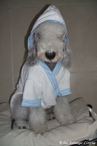 Olga après le bain.