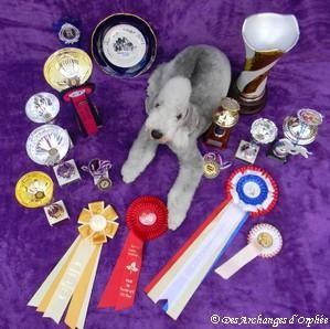 Olga et ses trophées de Championne Jeune.