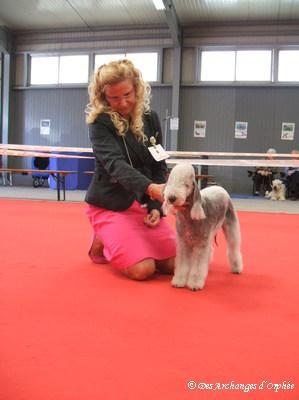 Olga dans le ring pendant le jugement..