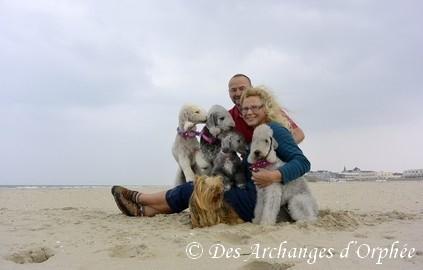Cliquez sur le lien pour voir les photos des Miss à la mer.