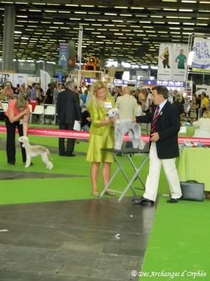 Olga - 3ème Excellent Jeune au Championnat de France jugé par M. Boris Chapiro (France).