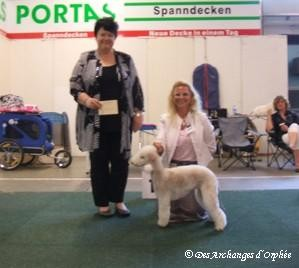 "BOB Jeune, J. CAC, ""Saarbrücken Jugendsieger 2012"" jugée par Mme Bode van de Meeberg (Pays-bas)"