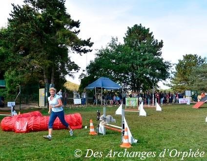 Cliquez sur le lien pour accéder aux photos du concours d'agility d'Orphée