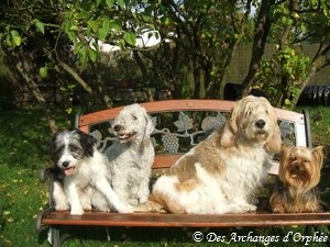 Lola, Orphée, Elliot & Agathe.