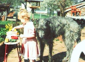 Scottish Deerhounds und Kinder! Barsoi- und Deerhoundzüchterin in der Eifel/Rheinland-Pfalz Nähe Schweiz, Luxemburg, Belgien, Niederlande!