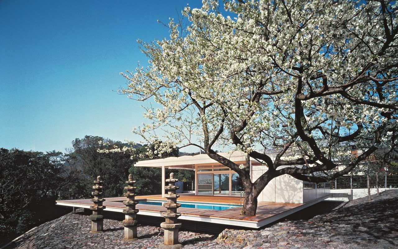 Maison au Japon, projet de 1987