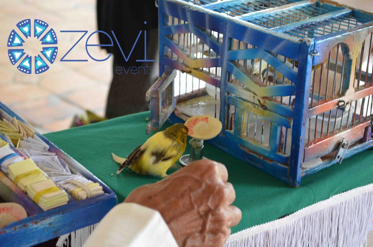 Fiesta mexicana con Zevi Events
