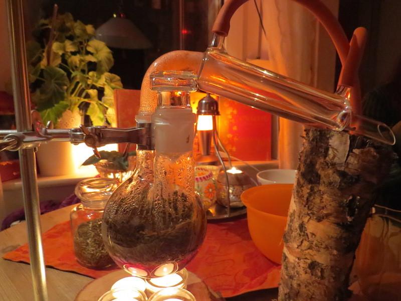 Kräuterkunde und Dufterlebnisse