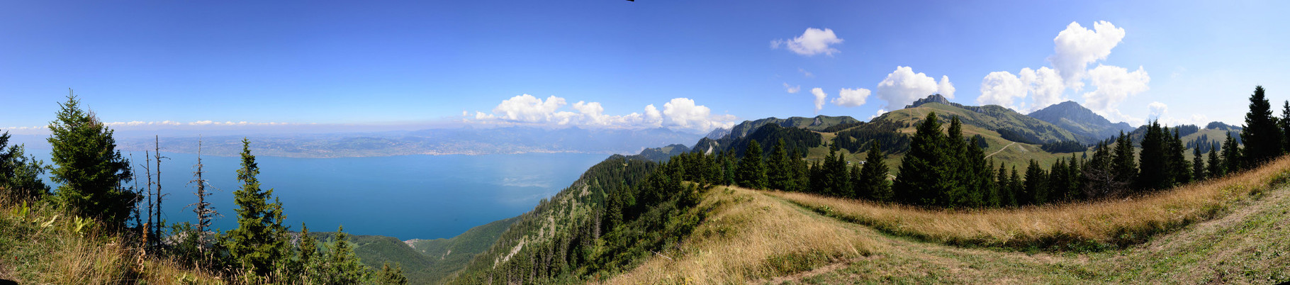 Sur les hauteurs du Lac Léman. 135°, 8 photographies.