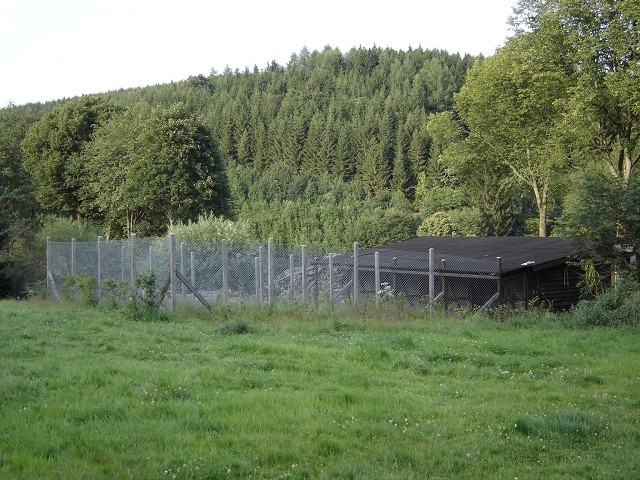 Zwingeranlage 2007