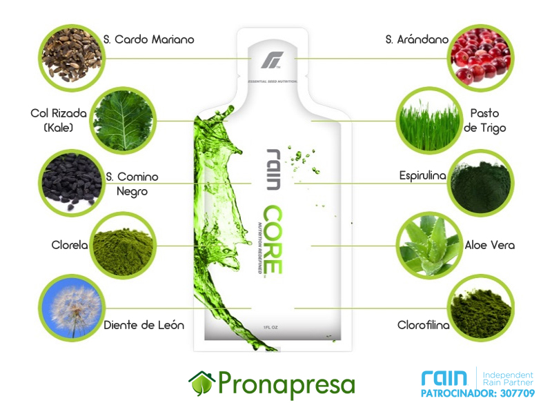 Ingredientes de Core de Rain International