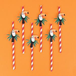 pailles-en-papier-anniversaire-pailles-toucan