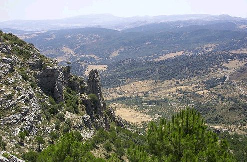Natural Park: Sierra de Grazalema. Cádiz. South of Spain.