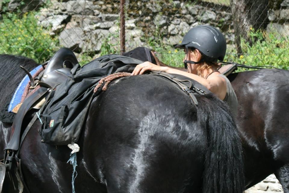 Préparation des chevaux, équipés de selles de rando