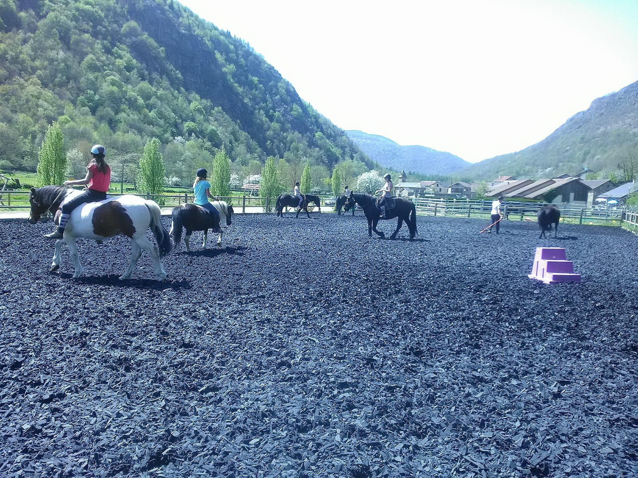 Du coup tout le monde essaie : certains poneys ont un peu ronflé, d'autres ont voulu goûter....et tous ont dévoilé leurs plus belles allures !