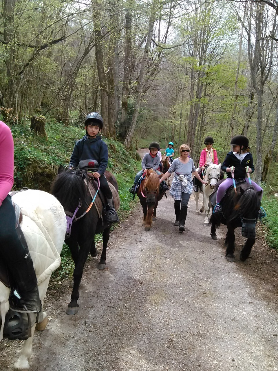 Balade poneys