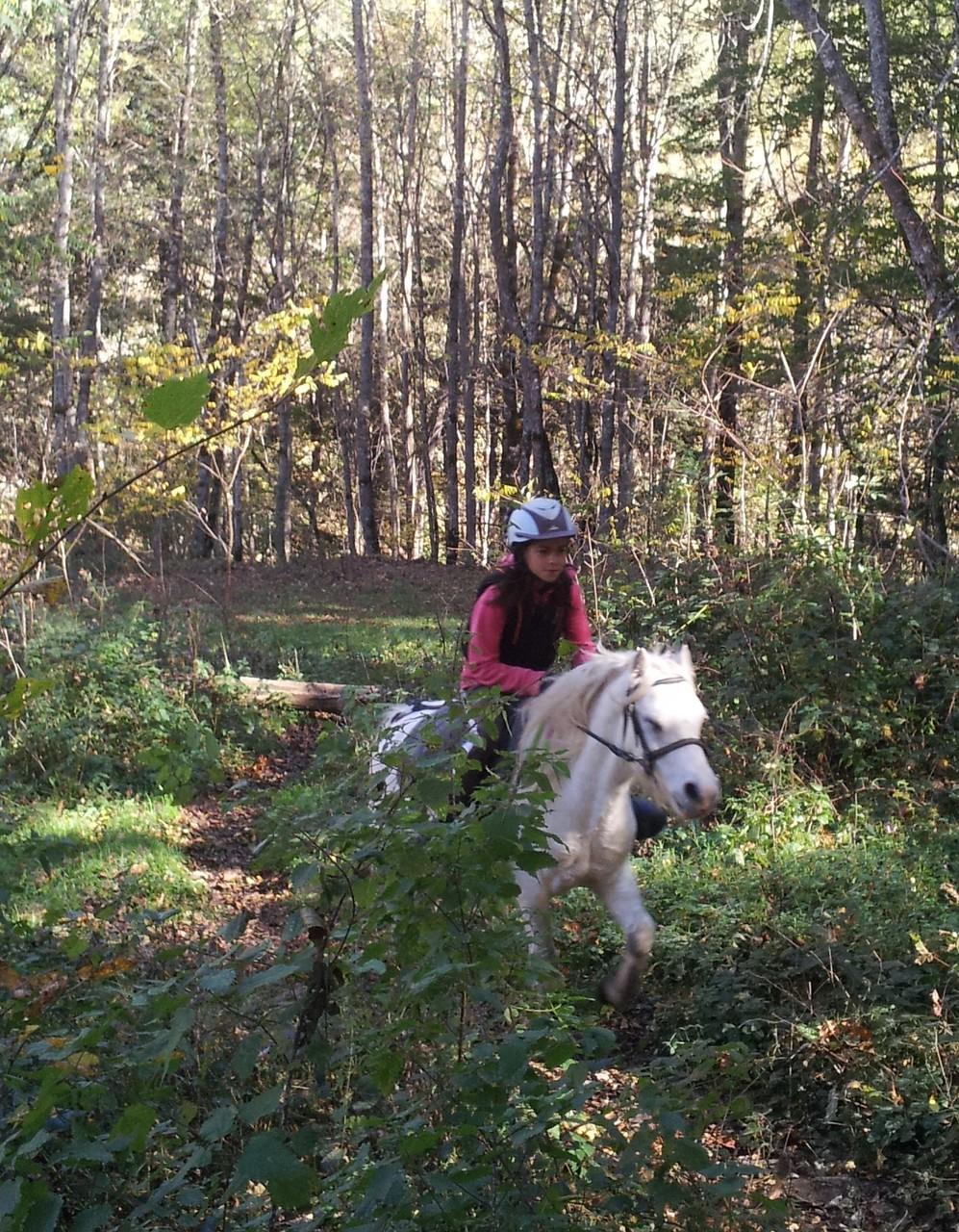 les cavaliers à poney profitent aussi grace aux parcours adaptés.
