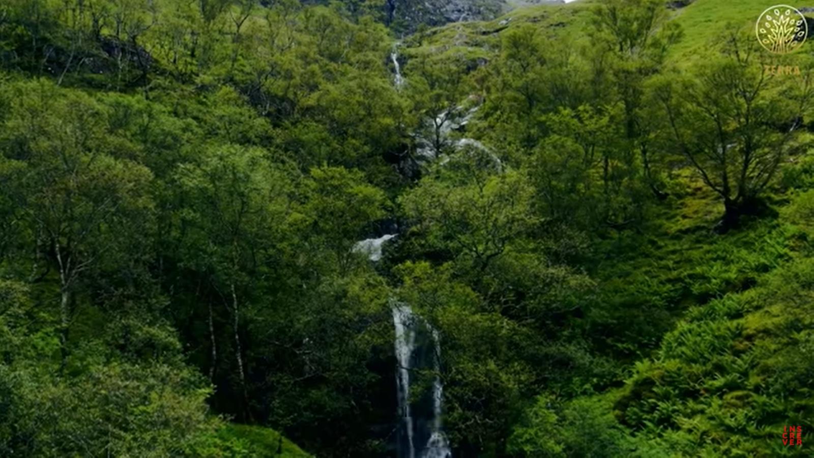 Connexion à la Terre   Musique relaxante et images de la nature   Pour dormir et se calmer