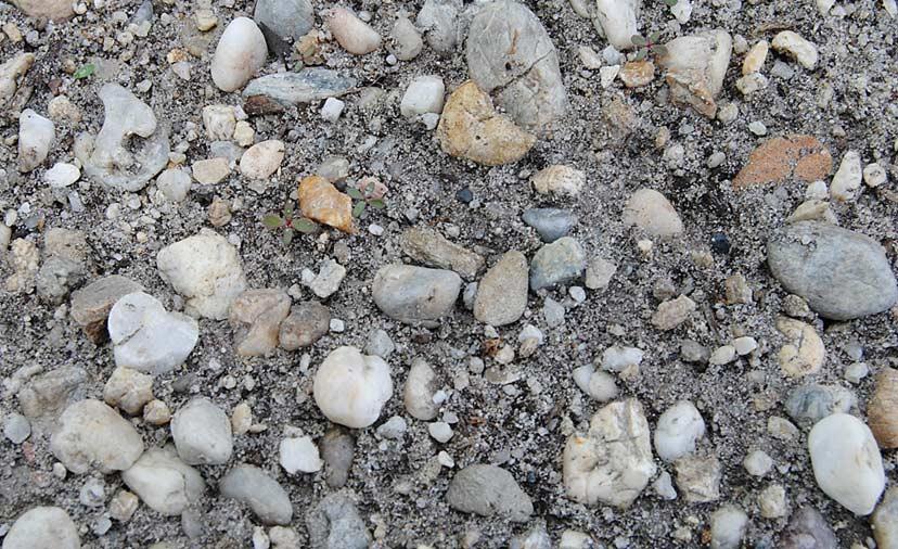 Terroir de Graves sableuses de Listrac-Médoc