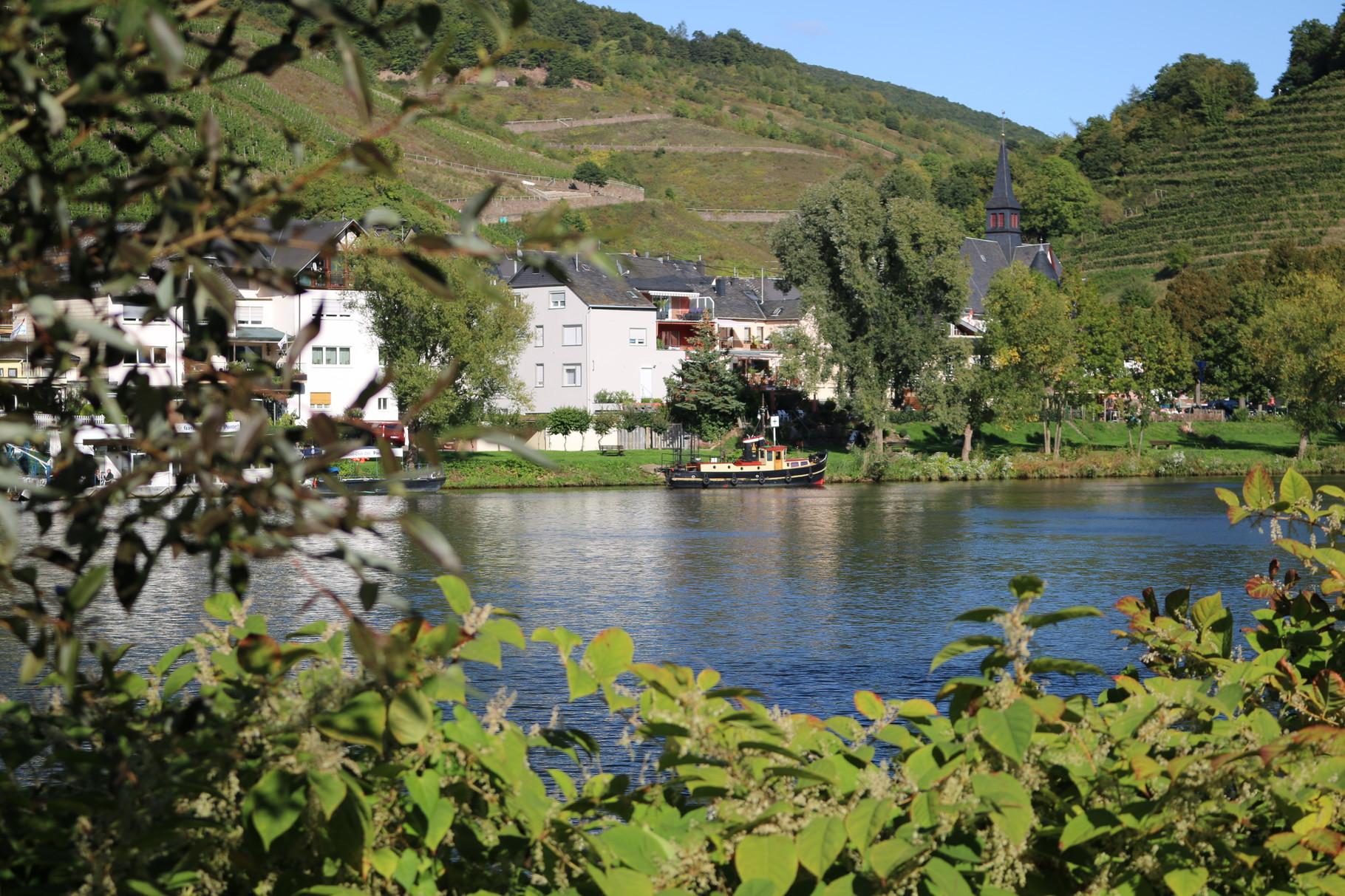 Unser Weingut-Gästehaus am Moselufer