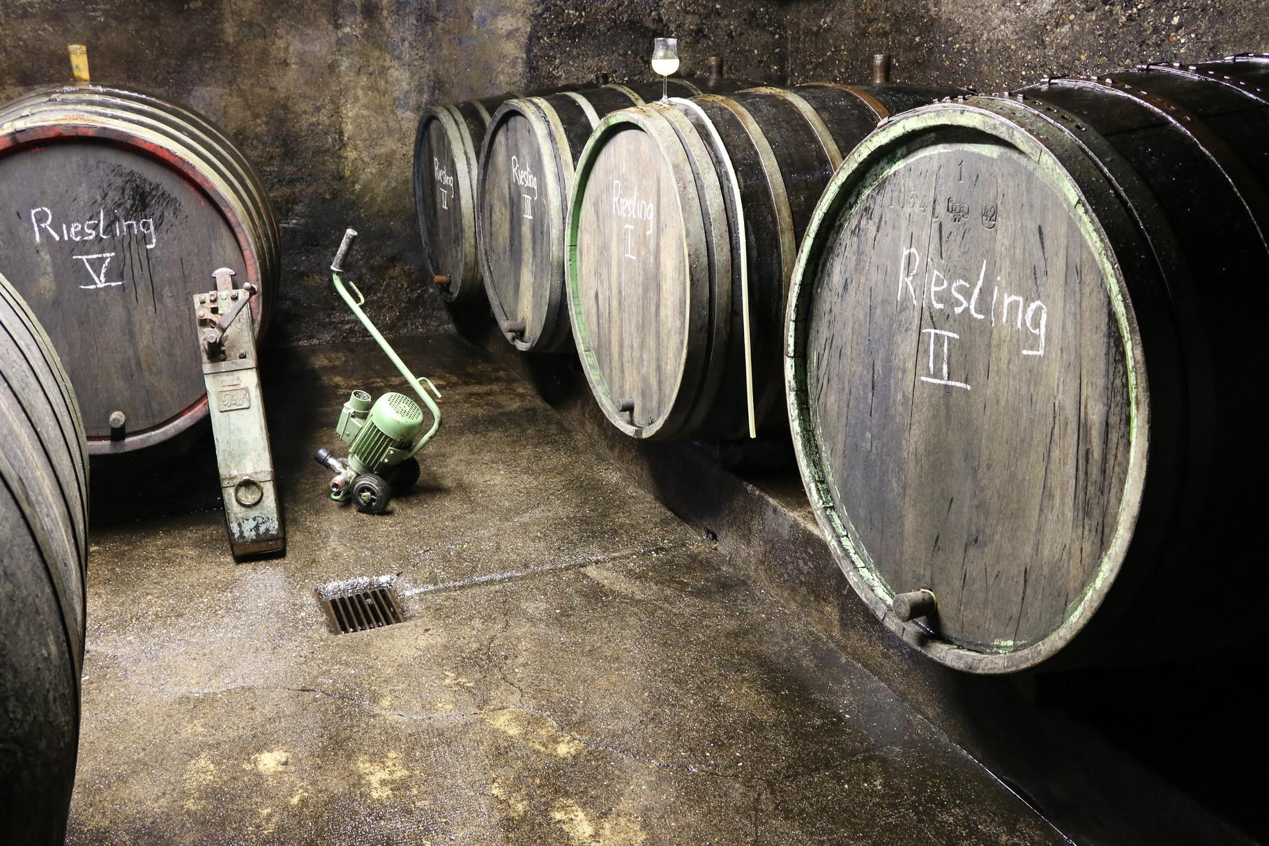 Holzfässer im Weinkeller