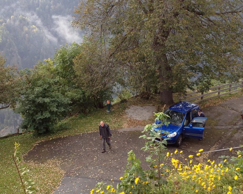 Nach dem Zurückschneiden von Stauden entlang der Alten Strasse...