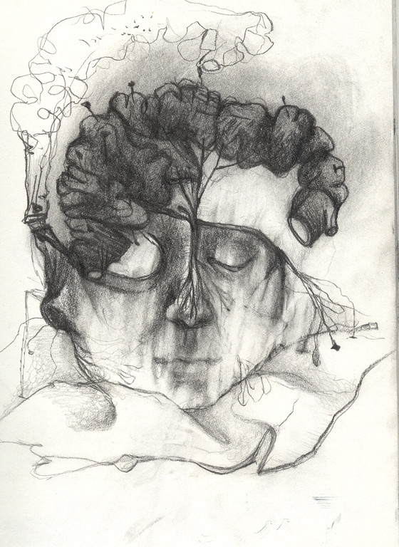 """""""tête anatomique"""", 2001, 17x25,  mine de plomb sur papier  ©"""