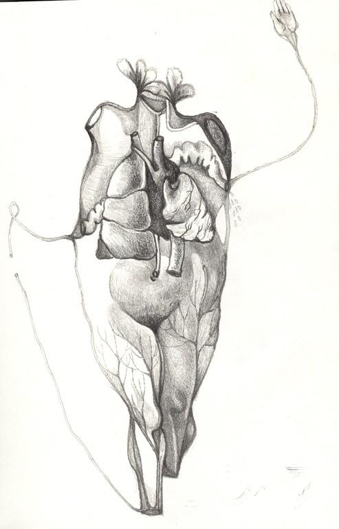 """""""femme fleur anatomique"""", 2001, 17x25,  mine de plomb sur papier  ©"""