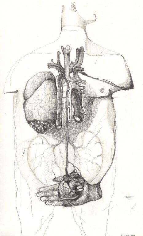 """""""dessin anatomique"""", 2001, 17x25,  mine de plomb sur papier  ©"""