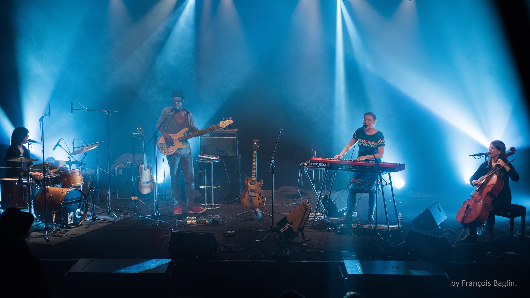 Daisies Fields-Concert Starter 31 mars 2016 (photo François Baglin)
