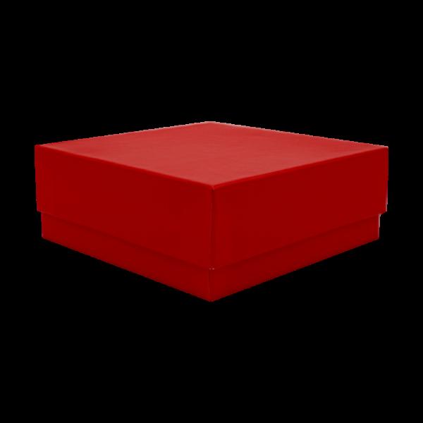 Kryobox 133 x 133 x 50mm rot