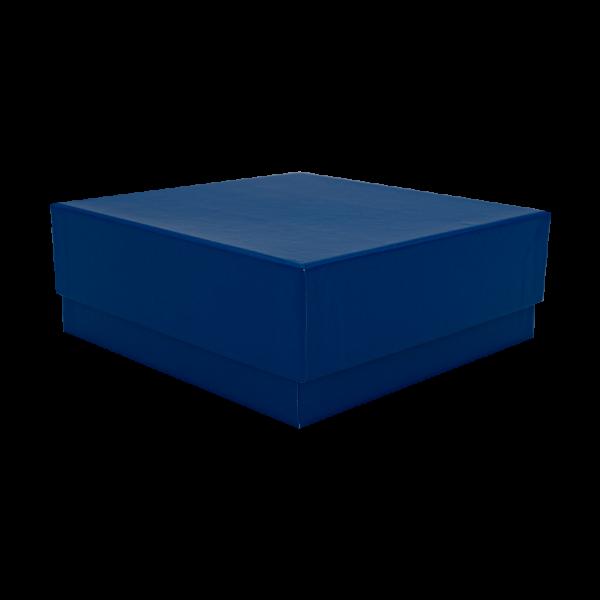 Kryobox 133 x 133 x 50mm blau
