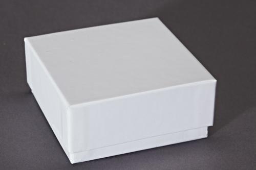 Weißer Karton mit Deckel. Bezogen mit weißem Glanzpapier. Geeignet als Einfrierbox mit Gefache.