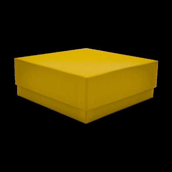 Kryobox 133 x 133 x 50mm gelb