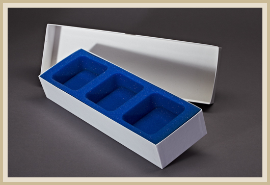 Dental Transportbox für drei Gipsabdrücke