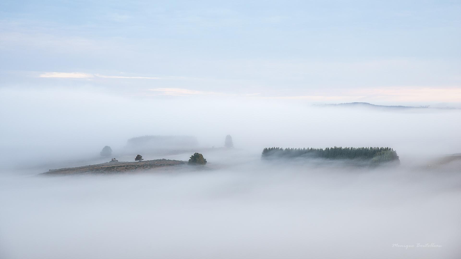 Sortie du livre : De brume et d'Aubrac