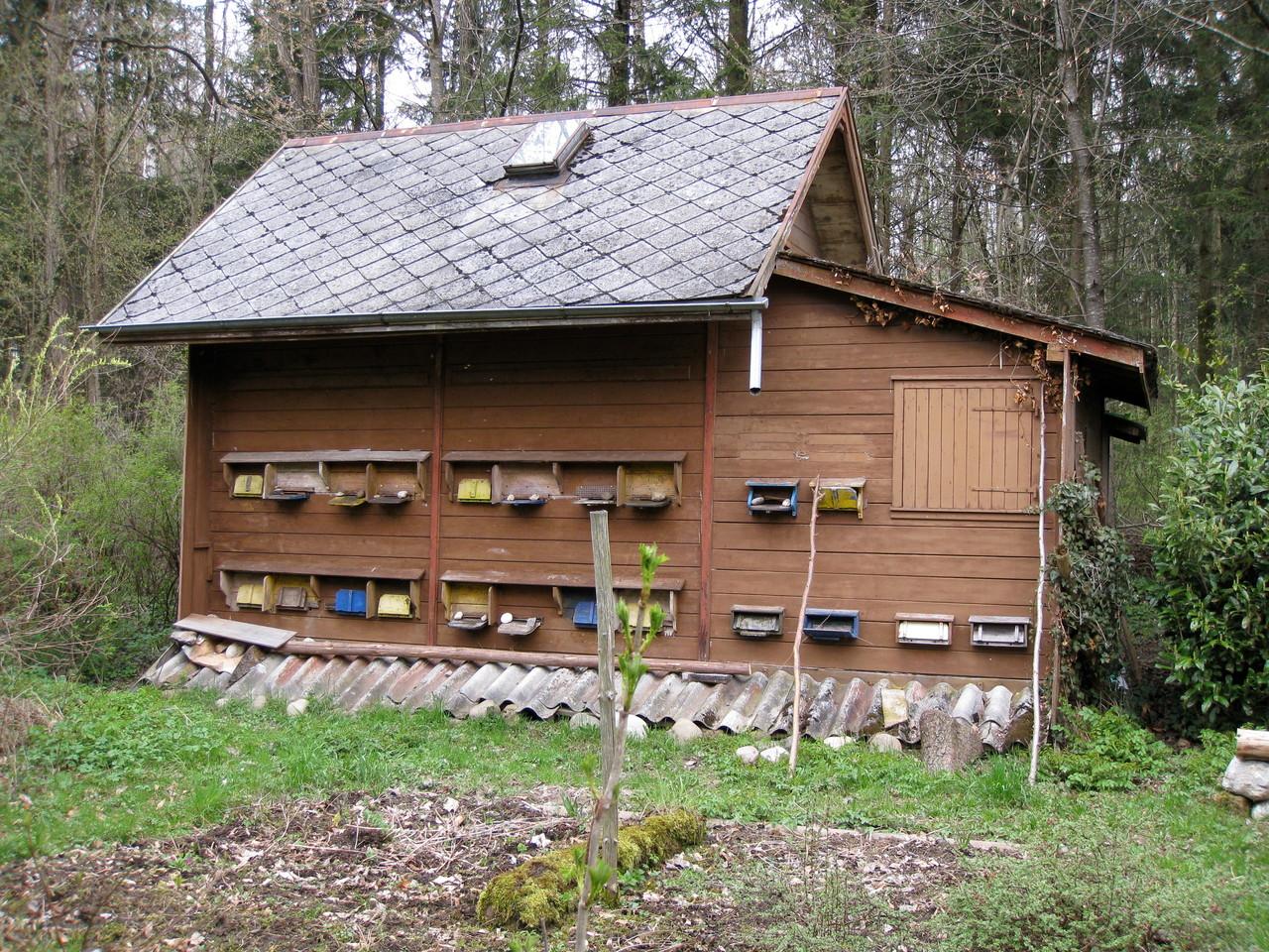 Bienenhaus: Vorher