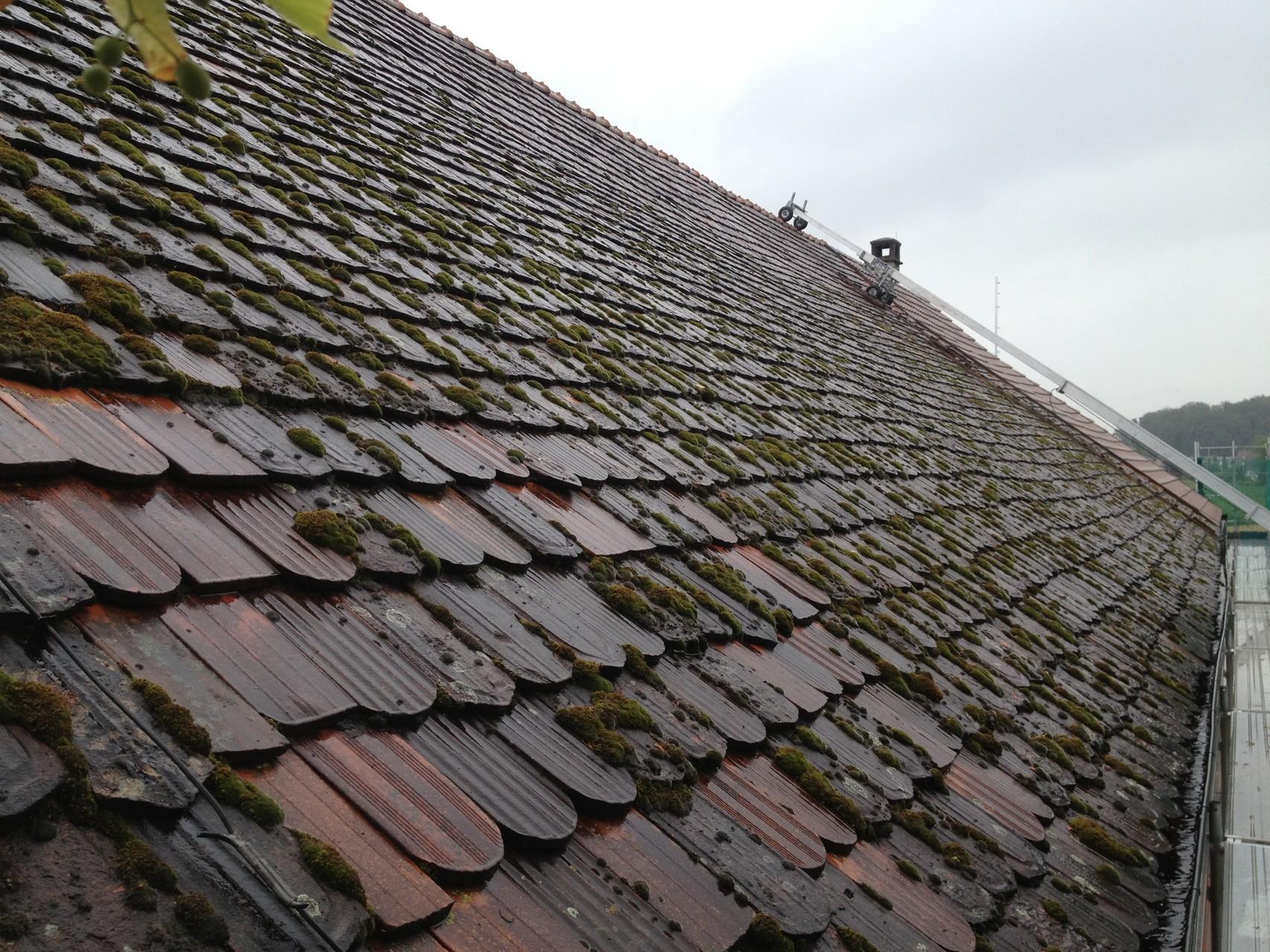 Dach vorher
