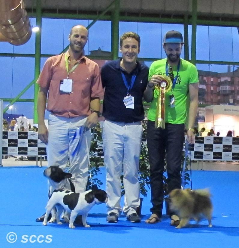 Concurso Canino Mejores Parejas