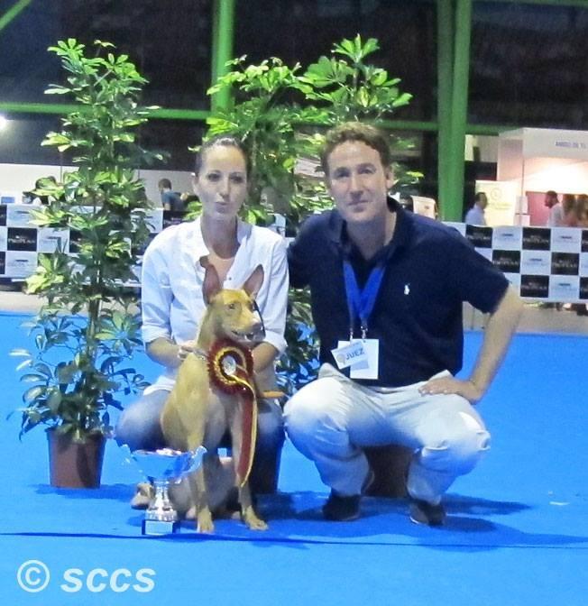 Concurso Canino Mejor Ejemplar Razas Españolas