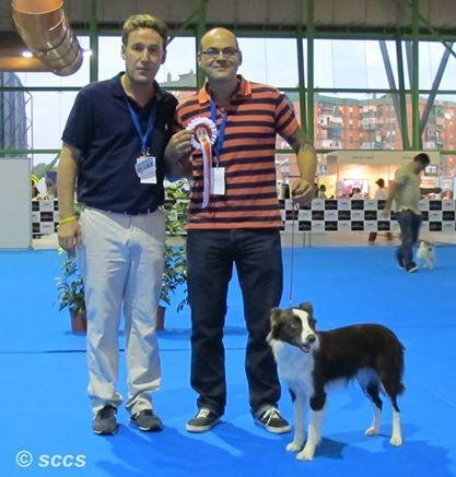 Concurso Canino Mejor Ejemplar Grupo 1