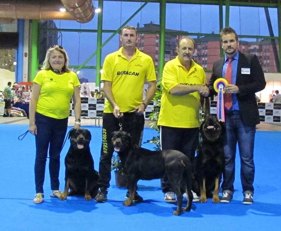 Concurso Canino Mejor Grupo de Cría