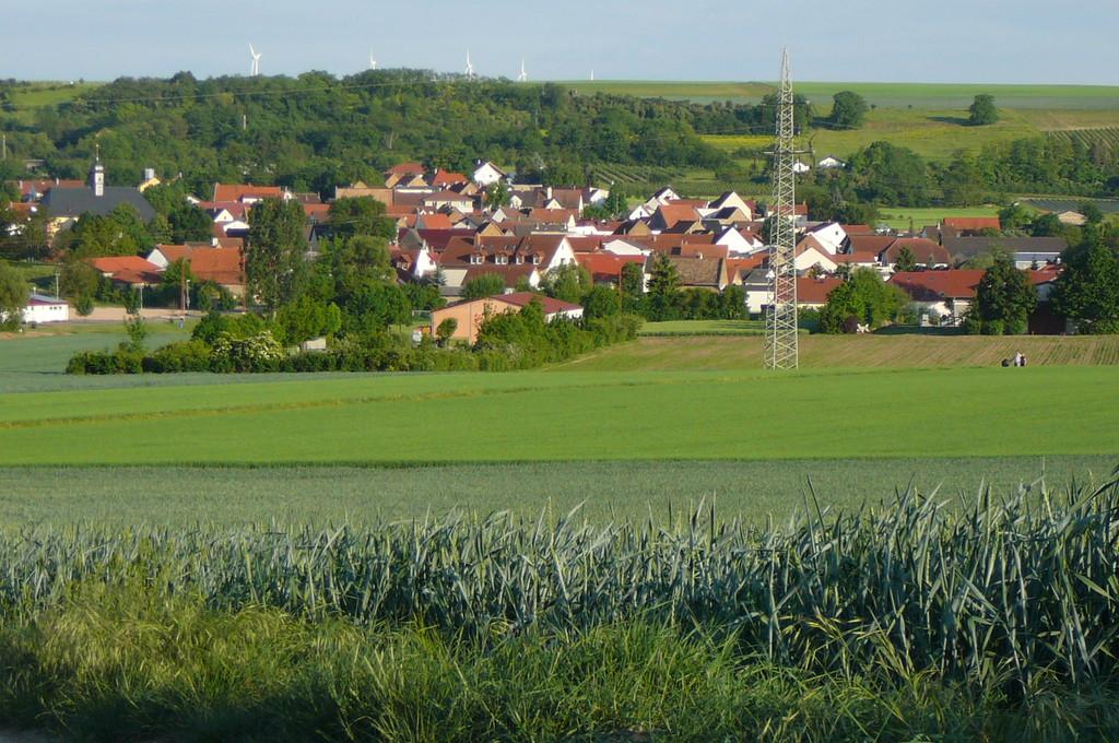 Blick auf Sulzheim