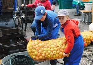 NAJUs beim Apfelfest