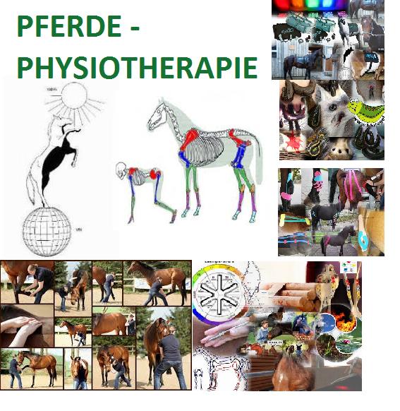 ganzheitliche Tier-Physiotherapie