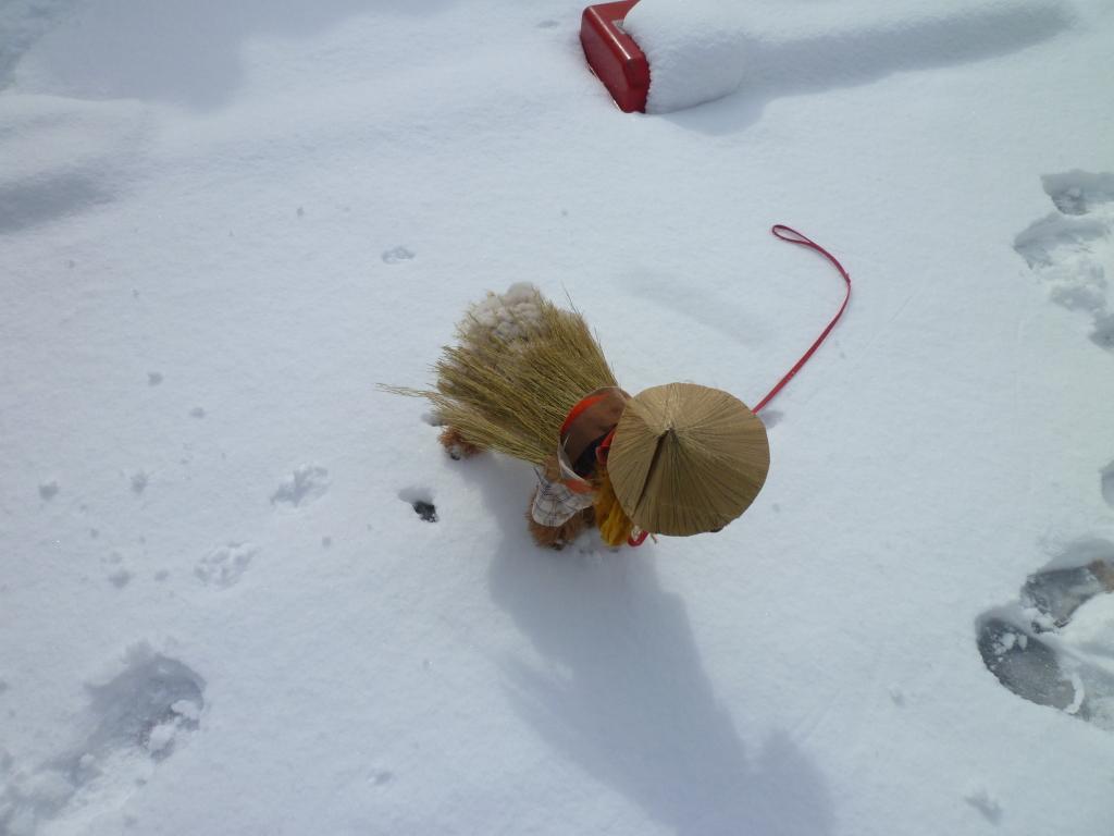 2012 雪がふったよ!