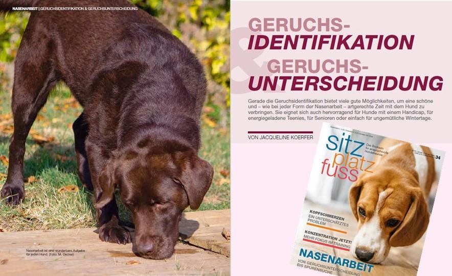 """Bericht von Jaqueline Koerfer in der Zeitschrift """"Sitz Platz Fuss"""""""