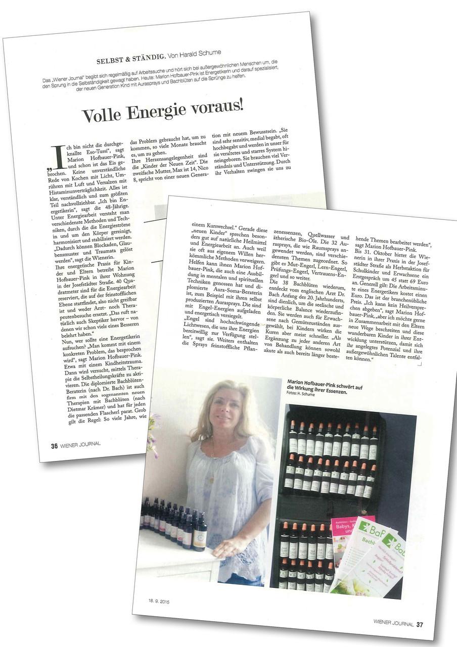 Erschienen im Wiener Journal am 18.9.2015