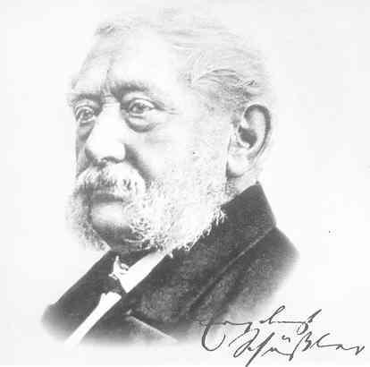 Dr. med. Wilhelm Heinrich Schüssler (1821–1898)