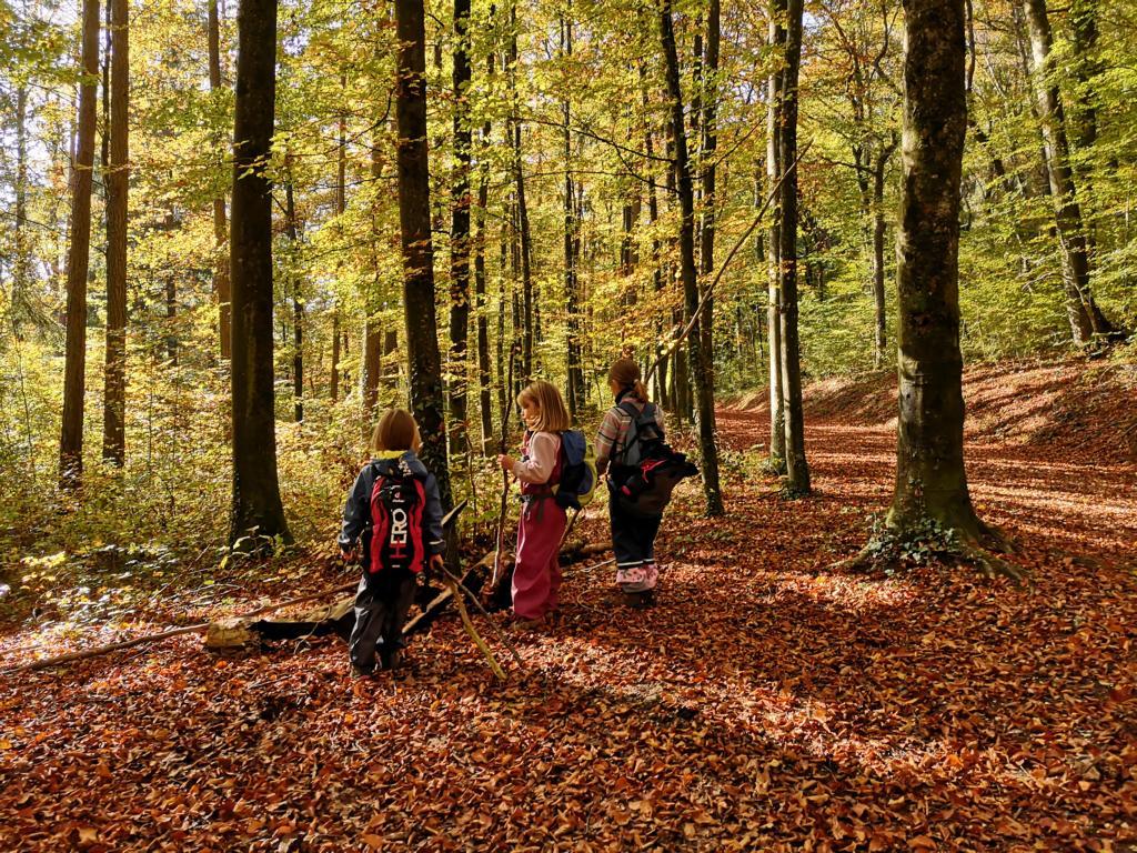 ...und den Wald entdecken